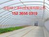 专业建造温室大棚