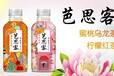 全國招商代理加盟由廣州貝奇飲料產家推出茶飲料
