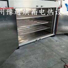 湖南汽车内饰件烘箱YT-881汽车方向盘固化烤箱橡胶二次硫化烘箱图片