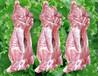 肉、新鲜猪肉、生鲜猪肉