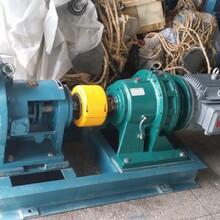 远东聚氨酯胶黏剂输送泵,远东转子泵NYP-110-RU-104U-W51图片
