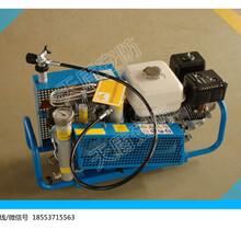 现货山东空气充填泵空气充填泵厂家充气量100L/min图片