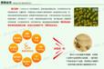上海黄浦区请问哪里有卖黄浦区安利产品安利店铺详细地址