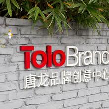 广州品牌策划_唐龙企业品牌高端策划