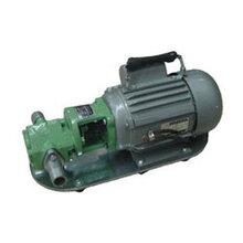 WCB-S微型齿轮油泵图片