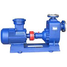 CYZ-A自吸油泵图片