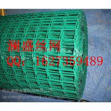 安平澜盛专业生产PVC电焊网、PVC电焊网规格、PVC电焊网价格、PVC电焊网图图片