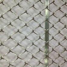 安平澜盛专业生产不锈钢勾花网、不锈钢勾花网价格、不锈钢勾花网规格、不锈钢勾花网图图片