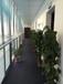 大中小型办公室出租可工商税务代办孵化器办公室出租舒适环境办公