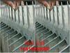 機場護欄防爬刺網監獄護欄鐵質鍍鋅防爬刺福建泉州晉江市