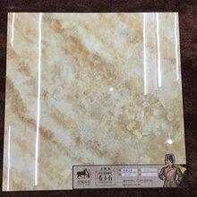 金刚釉金刚大理石大理石系列瓷砖800X800规格地砖