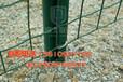 联德丝网生产荷兰网波浪网涂塑焊接网隔离网防护网围栏网