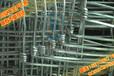 联德丝网生产养殖铁丝网牛栏网草原网围栏网