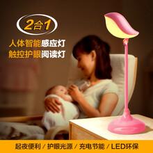 LED鸟语创意小夜灯时尚人体感应小夜灯学习阅读床头小夜灯