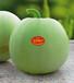 鼎牌水果香瓜种子玉奶香1号甜瓜种子青绿皮薄皮香瓜400粒批发