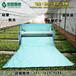 供应大棚保温棉被、大棚蔬菜保温被、食用菌类保温被、新型无胶棉保温棉被