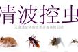 灭鼠好的方法,电子灭鼠河北沧州清波灭老鼠公司