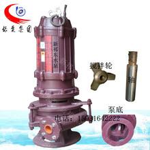 50PNQ立式潜水泥浆泵无堵塞抽粪泵清淤泵潜污渣浆泵吸沙泵新祁东水泵