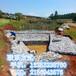 雨水排放建设边坡防护网格宾网铅丝石笼供应