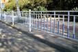 科阳之星直销市政锌钢道路护栏城市道路护栏