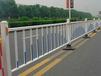 科阳之星供应晋江市政道路护栏锌钢道路护栏