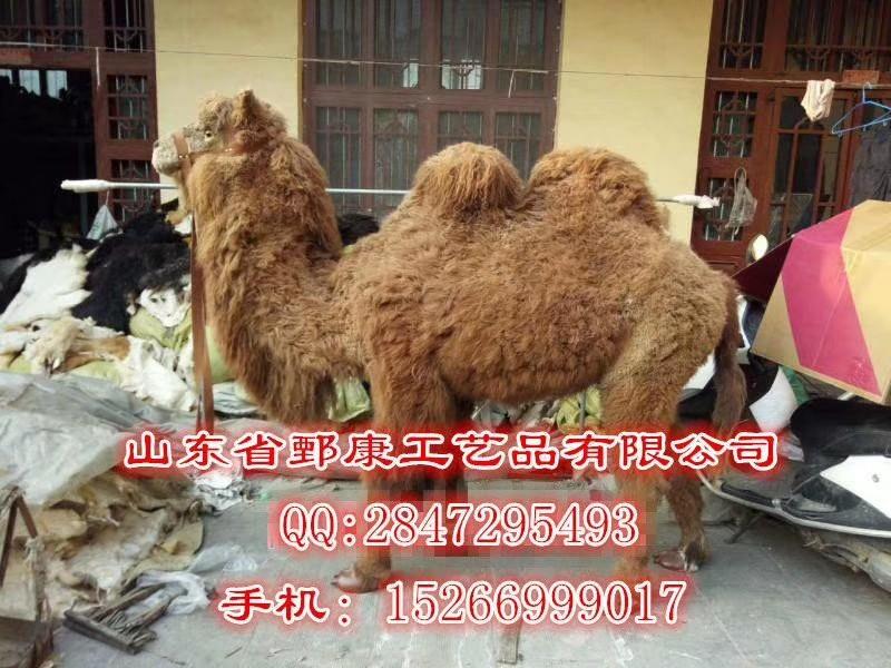 鄄城县鄄康工艺品厂