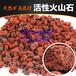 基质火山石多肉火山石滤料火山石3-5cm红色火山石