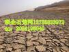 高质低价供应岸堤防冲格宾石笼网热镀锌涂膜格宾网垫河床边坡雷诺护垫绞拧石笼网