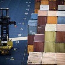 非洲进口木材到香港报关