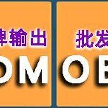 蓝莓叶黄素脂粉代加工/果蔬饮料oem/保护视力固体饮料OEM