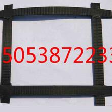 天津静海县钢塑格栅低价供应销售