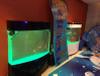 大型活体海洋鱼珊瑚展览租凭