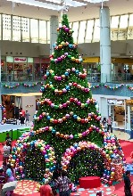 圣诞树租赁厂家大型圣诞树出租租赁价格圣诞树全国