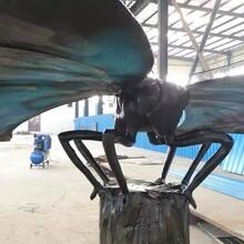 无锡牛奔科技昆虫模型展昆虫模型租赁上海昆虫模型厂家
