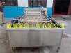 廠家直銷海產清洗機大型魚類清洗機水產清洗加工流水線