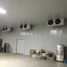 聚氨酯保温工程承建公司整体冷库保温工程图片