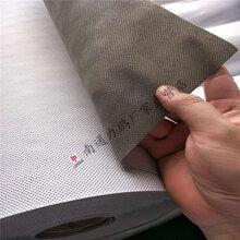 纺粘聚乙烯防水透汽层防水透气膜