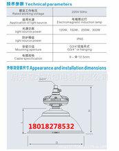 森本SBF6110免维护节能防水防尘防腐工厂灯150W-300W低频无极灯图片