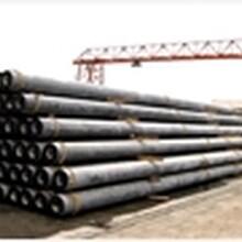 供应浙江9米电线杆-水泥电线杆
