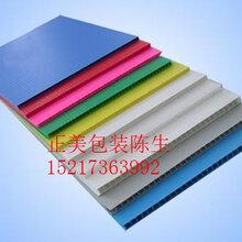 中空板/万通板专业设计生产厂家(厚度/颜色)中空板箱刀卡隔板可定做