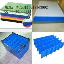 pp发泡板厂家定做纸箱状周转箱叠高塑料箱广告PP中空板箱图片