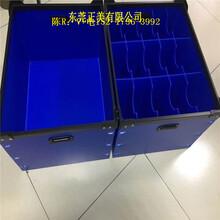 東莞長安塑膠萬通板長安PP塑料萬通板塑膠中空板廠圖片