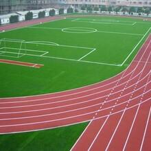 贛州哪里做跑道塑膠跑道娛樂場塑膠地板圖片