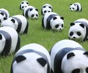 熊猫,哆啦A梦卡通租赁树脂玻璃钢摆件出租出售图片