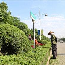 广州经济开发区园林绿化工程,绿化养护工程,鱼池水景假山凉亭,厂区天台花园隔热降温