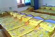 云南幼儿园床定制幼儿园床价格怎样久久乐信誉保证