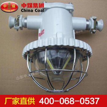DGS20-30/127L礦用隔爆型LED巷道燈礦用LED巷道燈規格參數