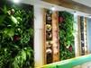 武汉植物墙公司哪家强?大量产品供应