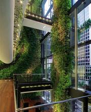 微森绿墙-专业的活体植物墙和仿真植物墙施工公司