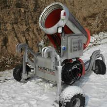 特价热卖进口造雪机械人工造雪机缩短造雪期图片